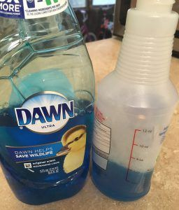 Bottle of Dawn and a spray bottle with Dawn in it on a counter top.