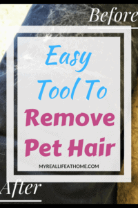 Title Easy Tool To Remove Pet Hair