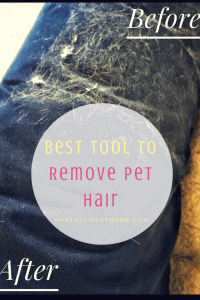 Best Tool to Remove Pet Hair title with dog bed covered with hair