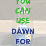 Title You Can Use Dawn For What? Bottle of blue Dawn Detergent sitting on stovetop in background