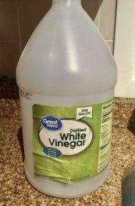 Large jug of white vinegar sitting on granite kitchen counter