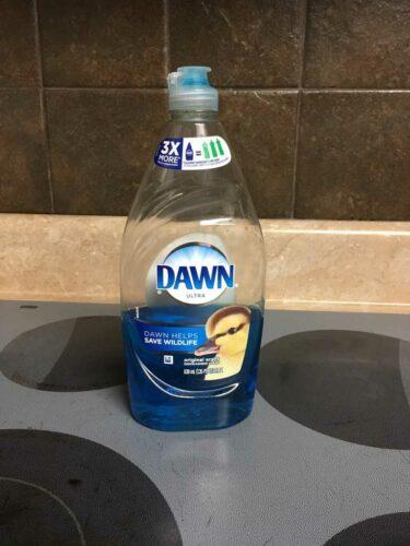 Bottle of blue Dawn Detergent sitting on stovetop