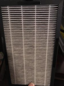 Dirty HEPA filter out of an air purifier