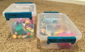 2 small clear plastic storage containers with small toys inside - Puppy In My Pocket and Shopkins