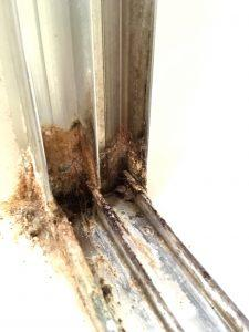Bottom corner of shower door tracks with mineral deposit build up